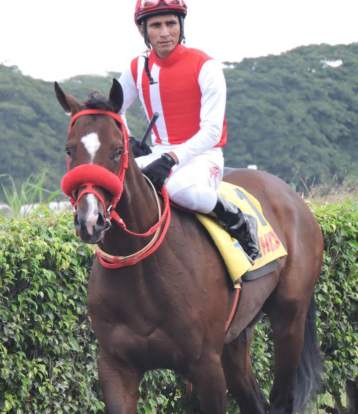 mimo-caballodealvaronoboa-eluniverso