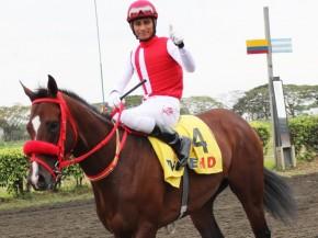 mimo-the-championhorse-ownedbyalvaronoboathumb