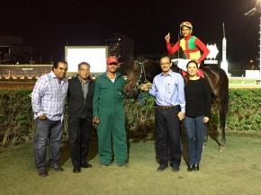 boyardo horse win in Lima, perú.