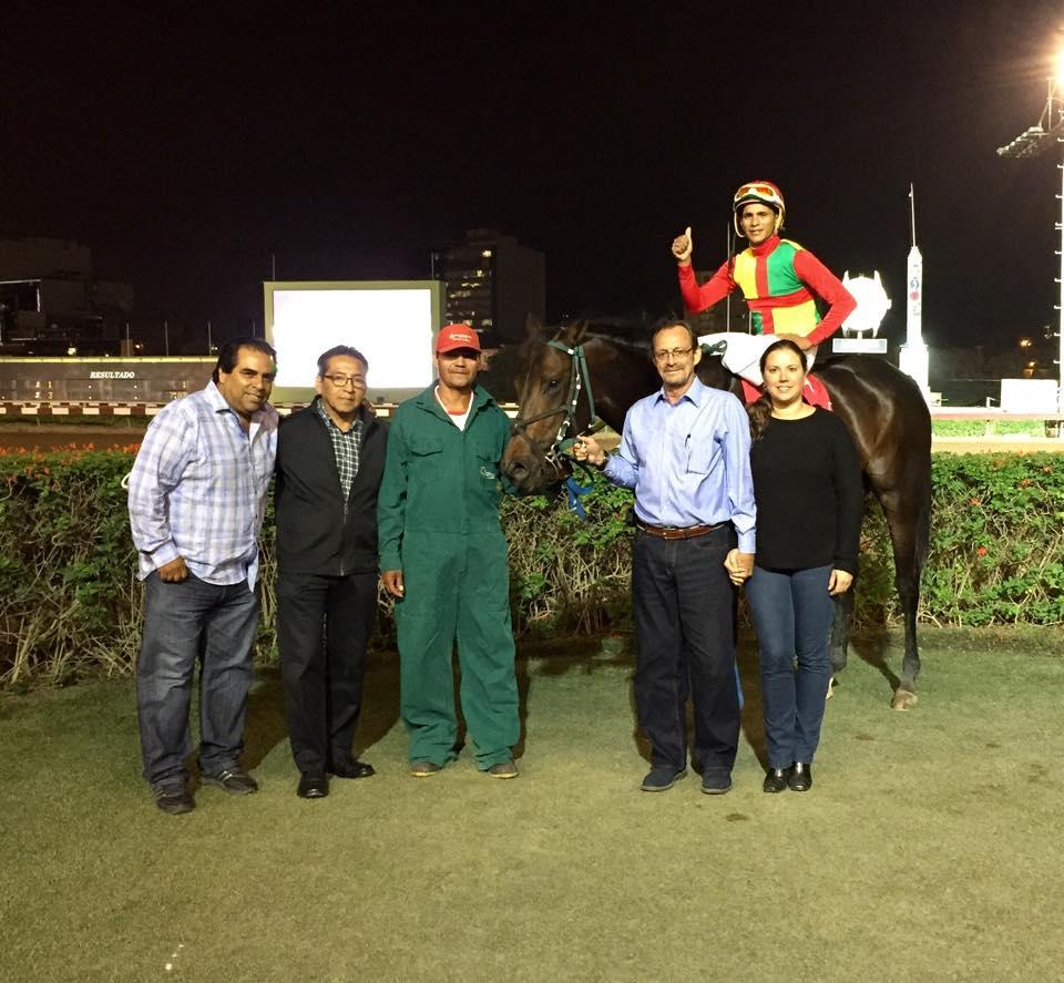 caballo boyardo gana en Lima, perú.
